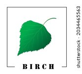 green birch leaf and the...   Shutterstock .eps vector #2034465563