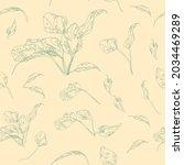 beautiful endless gentle floral ...   Shutterstock .eps vector #2034469289