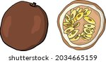 passion fruit in vector hand... | Shutterstock .eps vector #2034665159