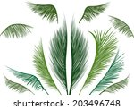 green tropical palm leaves on... | Shutterstock .eps vector #203496748