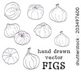 set of hand drawn sketchy figs. ... | Shutterstock .eps vector #203497600
