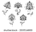 ornate calligraphic black and...   Shutterstock .eps vector #203516800