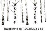 black and white birch tree...   Shutterstock .eps vector #2035316153