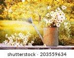 Summer Beautiful Garden With...