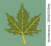 simplicity maple leaf freehand... | Shutterstock .eps vector #2036251046