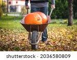 Man Pushing Wheelbarrow With...