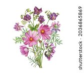 Bouquet With Field Geranium ...