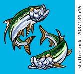 Set Of Tarpon Fish For Gamefish ...
