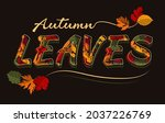 print with inscription  color... | Shutterstock .eps vector #2037226769