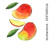 mango fruit drawing with... | Shutterstock . vector #2037600116