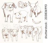 pig day | Shutterstock . vector #203836993