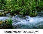oirase gorge in fresh green ... | Shutterstock . vector #203860294