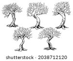 set of dry tree in hand drawn... | Shutterstock .eps vector #2038712120