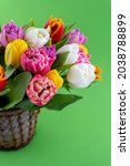Mix Of Spring Tulips Flowers....
