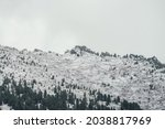 Winter Landscape With Snowy...