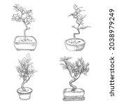 set of bonsai japanese trees... | Shutterstock .eps vector #2038979249