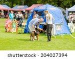 ronneby  sweden   july 05  2014 ... | Shutterstock . vector #204027394