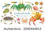 set of sea creature watercolor...   Shutterstock . vector #2040464813