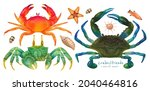 set of sea crab watercolor hand ...   Shutterstock . vector #2040464816