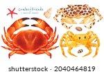 set of sea crab watercolor hand ...   Shutterstock . vector #2040464819