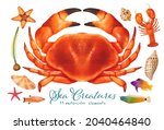 set of sea creature watercolor...   Shutterstock . vector #2040464840