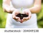 human hands holding green small ... | Shutterstock . vector #204049138