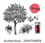 cherry tree with ripe fruits ... | Shutterstock .eps vector #2040748856