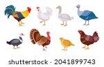 cartoon farm birds chicken hen  ...   Shutterstock .eps vector #2041899743