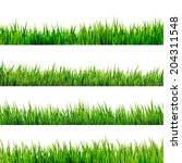 grass isolated on white. and...   Shutterstock .eps vector #204311548