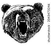 bear head  grizzly head  wild...   Shutterstock .eps vector #2043473246