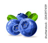 blueberries and leaves isolated ... | Shutterstock .eps vector #204397459