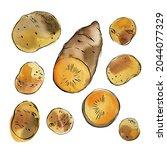 sweet potato yam. vegetables... | Shutterstock . vector #2044077329