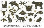 mystic boho witchcraft hand... | Shutterstock .eps vector #2044730876