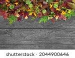 Natural Autumn Nature...