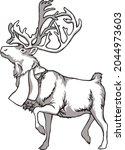 Caribou Deer And Indigenous...