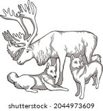 Caribou And Indigenous Peoples...