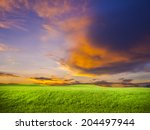 green grass on colorful sunset... | Shutterstock . vector #204497944