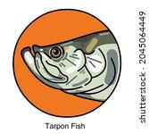 Tarpon Fish Logo Illustration...