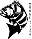 Sheepshead Fish Logo template. Unique and Fresh sheephead fish jumping. Great to use as your sheepshead fishing activity.