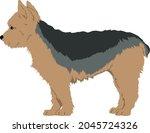 yorkshire terrier  yorkie dog ...   Shutterstock .eps vector #2045724326