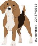 the beagle dog  vector...   Shutterstock .eps vector #2045740913
