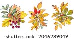 set of autumn bouquets with...   Shutterstock . vector #2046289049