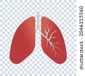 lungs vector icon. medical... | Shutterstock .eps vector #2046315560