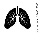 lungs vector icon. medical... | Shutterstock .eps vector #2046315563