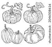 pumpkin vector sketch hand... | Shutterstock .eps vector #2046508616