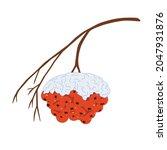 a rowan branch under the snow ... | Shutterstock .eps vector #2047931876