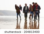 Stock photo multi generation family walking on winter beach with dog 204813400