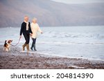 Stock photo senior couple walking along winter beach with pet dog 204814390