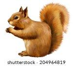 Red Squirrel  Sciurus Vulgaris  ...