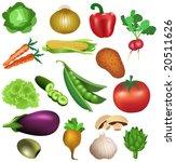 set of vegetables   Shutterstock .eps vector #20511626